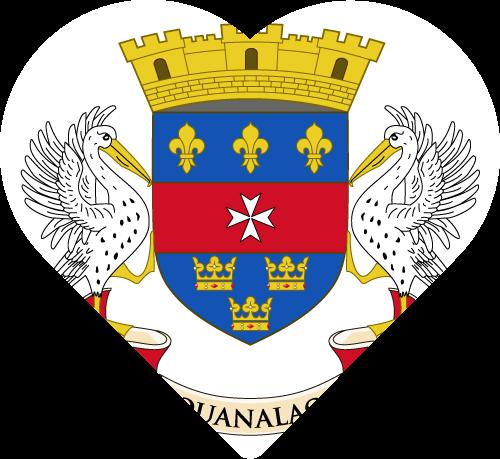 Vector flag of Saint Barthélemy
