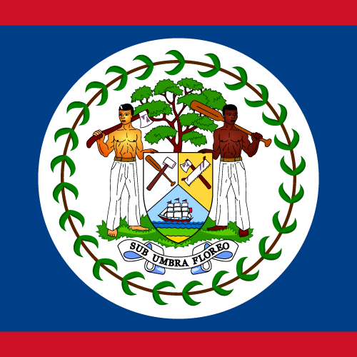 Vector flag of Belize - Square