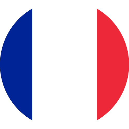 Vector flag of France - Circle