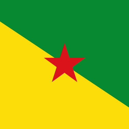 Vector flag of French Guiana - Square