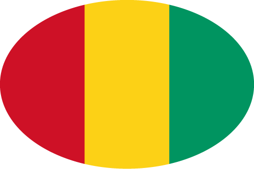 Vector flag of Guinea - Oval