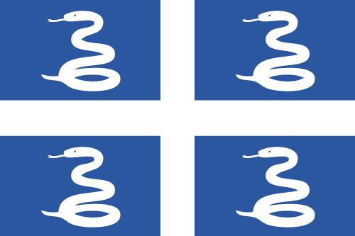 Vector flag of Martinique