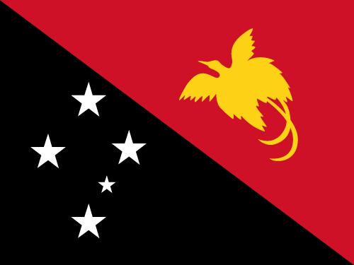 Vector flag of Papua New Guinea