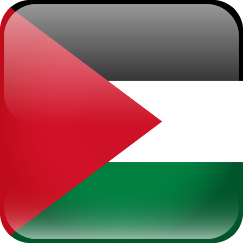 Vector flag of the State of Palestine - Cube