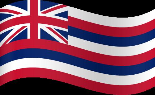 Vector flag of Hawaii - Waving