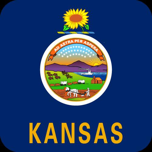 Vector flag of Kansas - Button