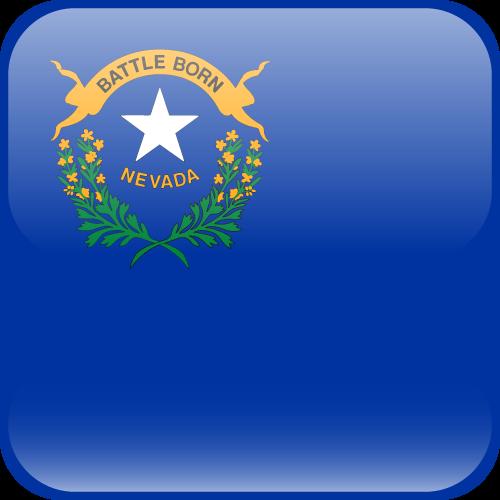 Vector flag of Nevada - Cube