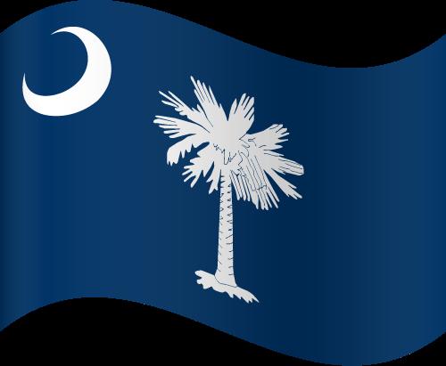 Vector flag of South Carolina - Waving